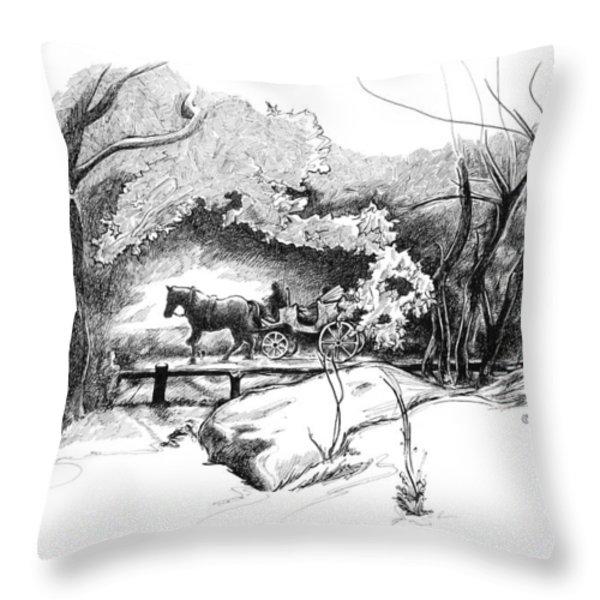 A Ride Through Central Park Throw Pillow by Liz Viztes