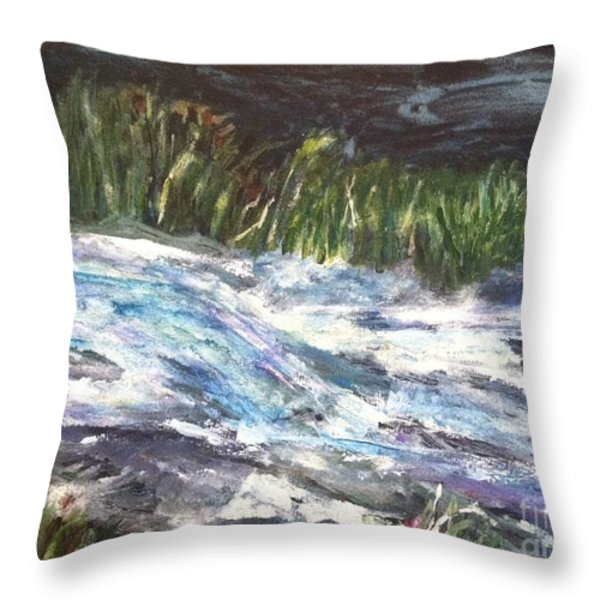 A River Runs Through Throw Pillow by Sherry Harradence