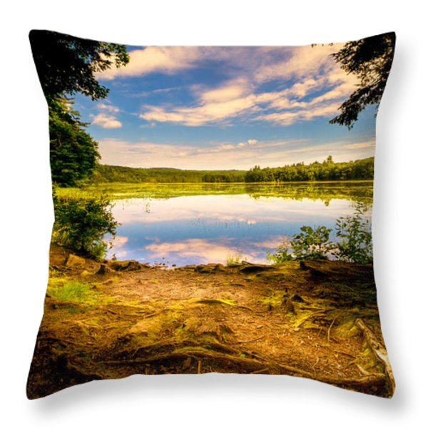 A Secret Place Throw Pillow by Bob Orsillo