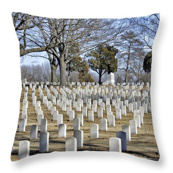 A Sobering Scene Throw Pillow by Jason Politte