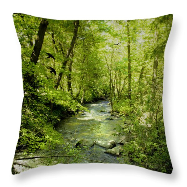 A Spring Day At Lithia Creek Throw Pillow by Diane Schuster