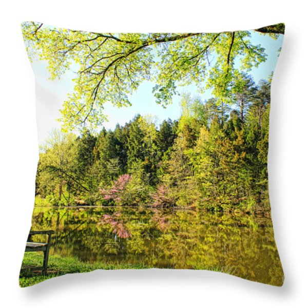 A Spring Morning Throw Pillow by Darren Fisher