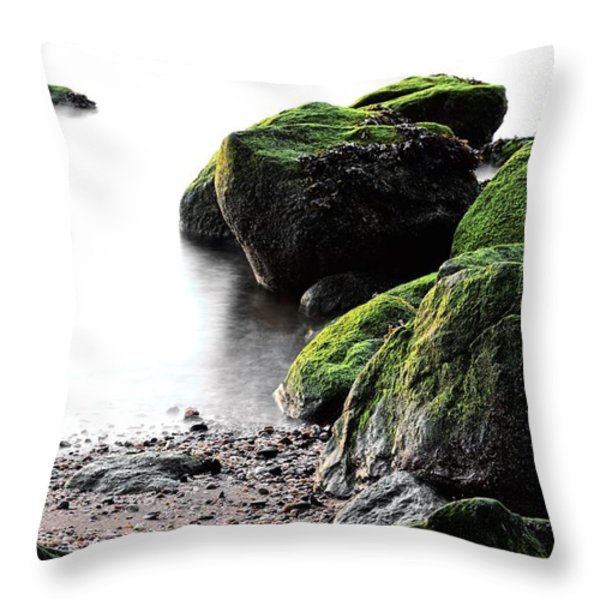 A Study in Green Throw Pillow by JC Findley