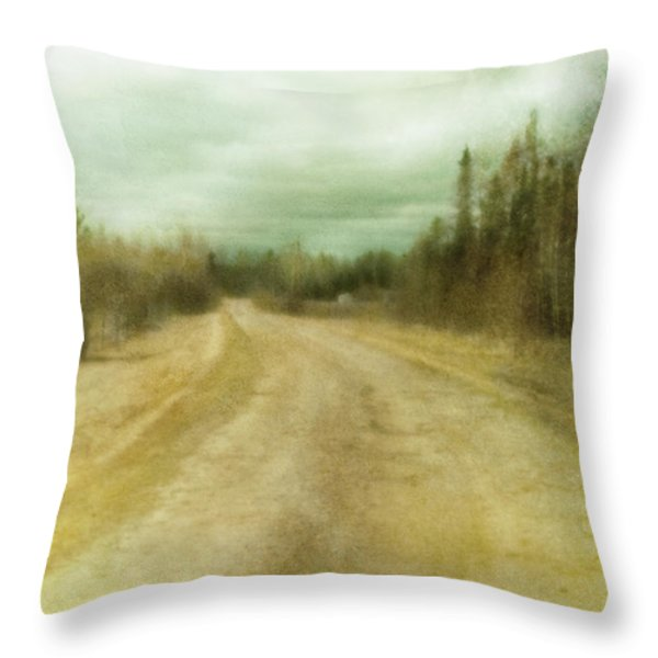 A Textured Pictorialist Photograph Of A Throw Pillow by Roberta Murray