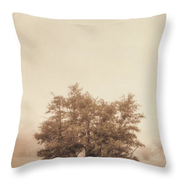 A Tree in the Fog Throw Pillow by Scott Norris
