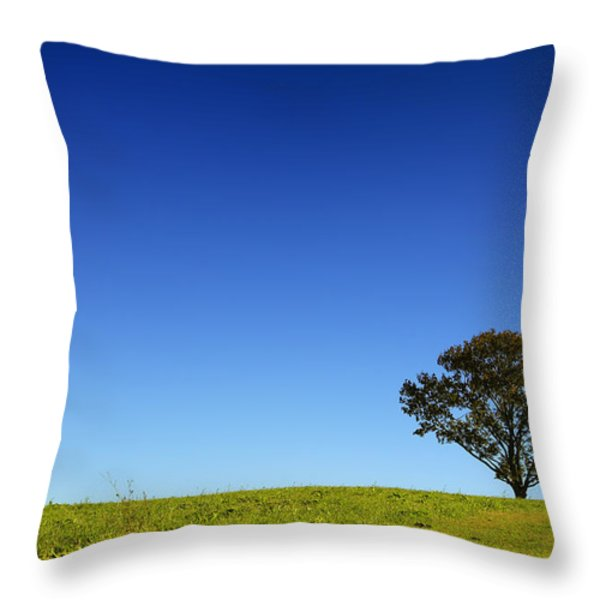 A Tree Stands Alone Throw Pillow by Karol  Livote