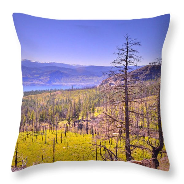 A View from Okanagan Mountain Throw Pillow by Tara Turner