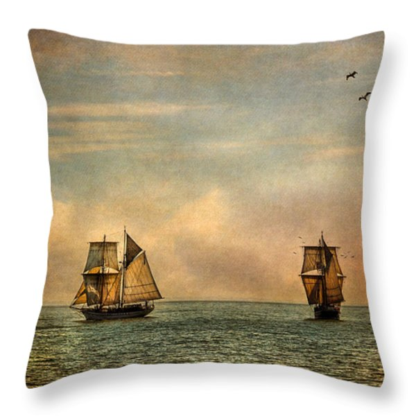 A Vision I Dream Throw Pillow by Dale Kincaid