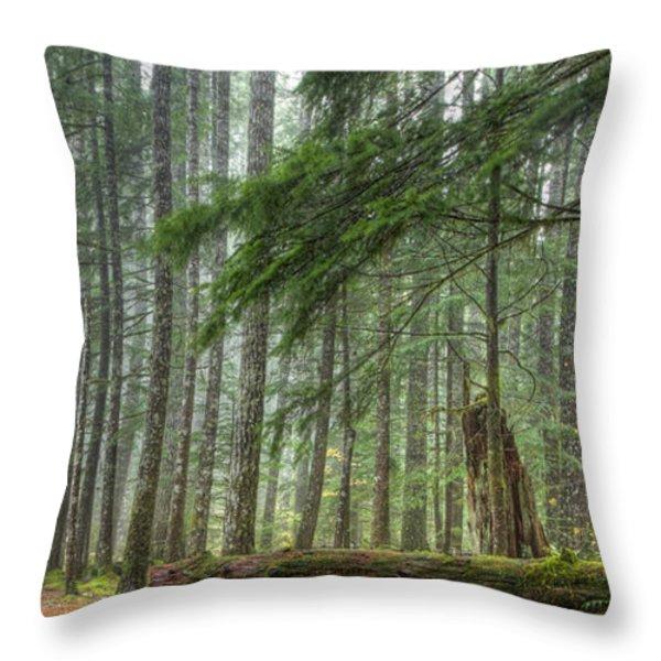 A Walk Through the Forest Throw Pillow by Jean Noren
