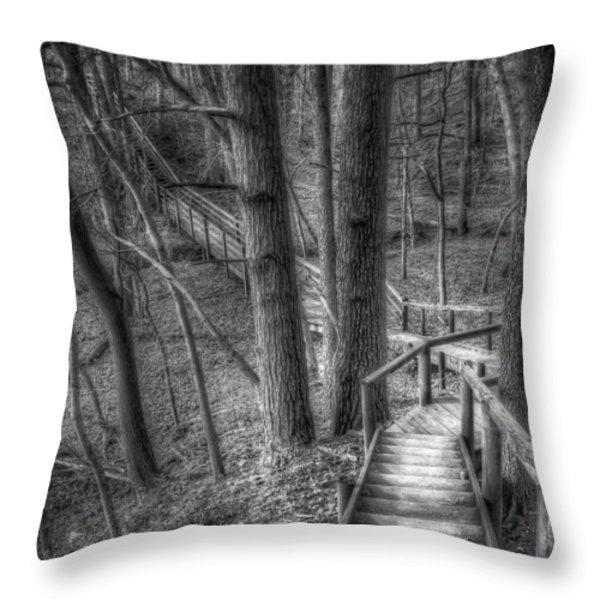 A Walk Through the Woods Throw Pillow by Scott Norris