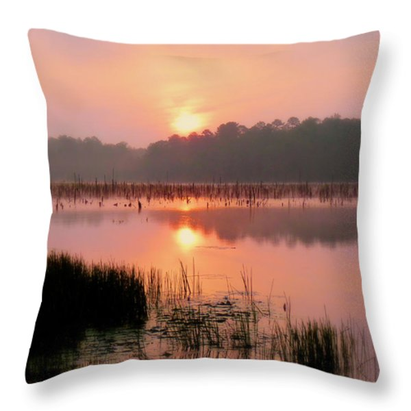 A Wetlands Sunrise Throw Pillow by JC Findley