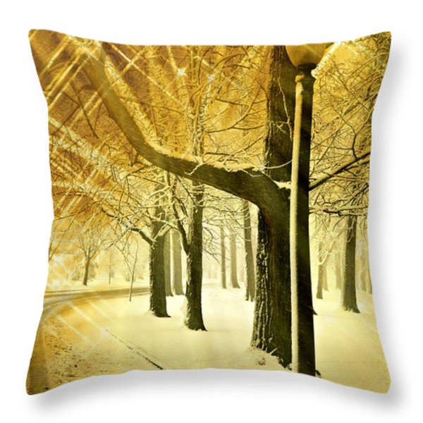 A Winter's Night Throw Pillow by Marty Koch