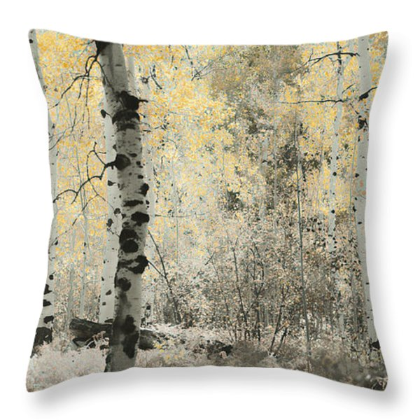 A Wisp of Gold Throw Pillow by Don Schwartz