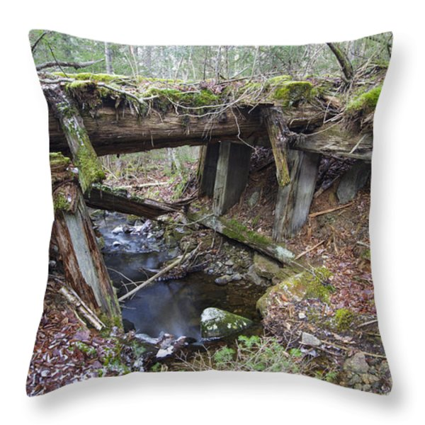 Abandoned Boston And Maine Railroad Timber Bridge - New Hampshire Usa Throw Pillow by Erin Paul Donovan