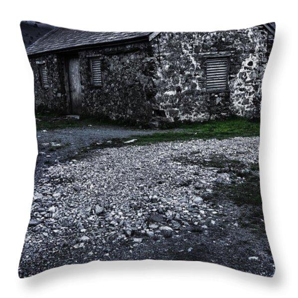Abandoned Farm Throw Pillow by Svetlana Sewell