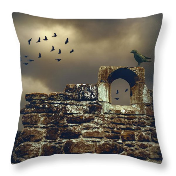 Abbey Wall Throw Pillow by Amanda And Christopher Elwell