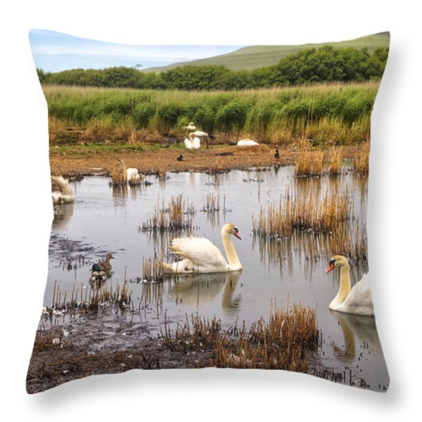Abbotsbury Swannery Throw Pillow by Joana Kruse