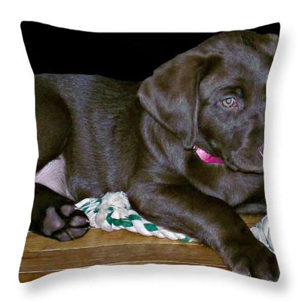 Abby Throw Pillow by Barbara S Nickerson