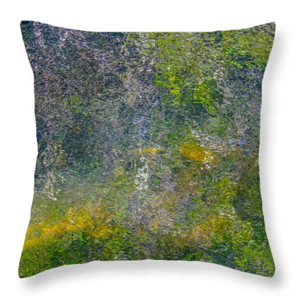 Abstract By Nature Throw Pillow by Roxy Hurtubise