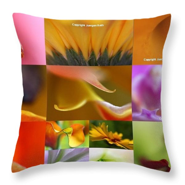 Abstract Fine Art Flower Photography Throw Pillow by Juergen Roth