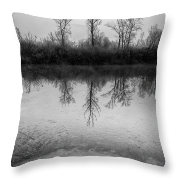 Across The Water Throw Pillow by Davorin Mance