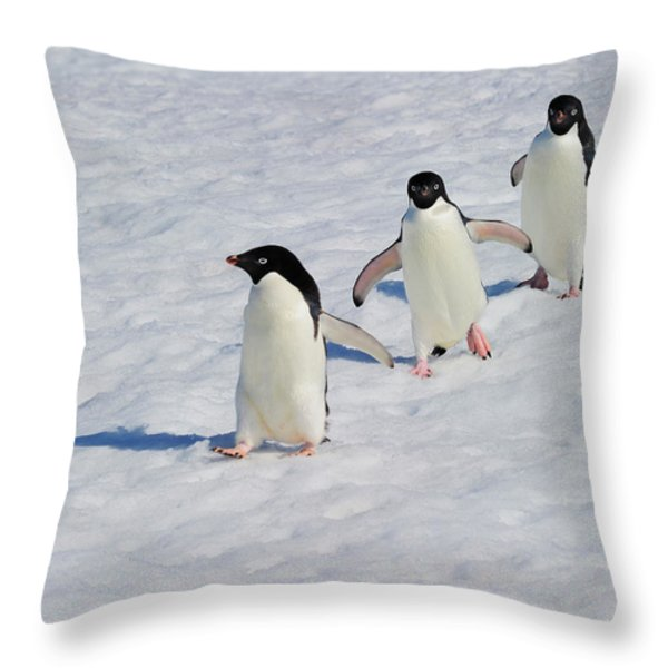 Adelie Patrol Throw Pillow by Tony Beck