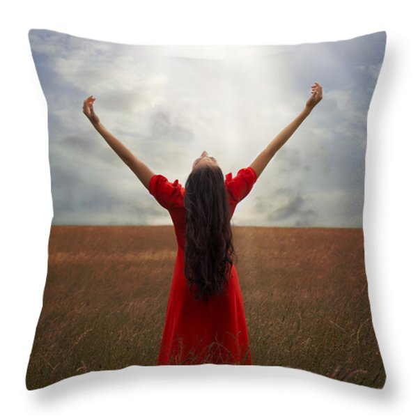 Admiration Throw Pillow by Joana Kruse
