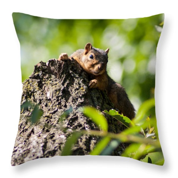 Advantage Point Throw Pillow by Optical Playground By MP Ray