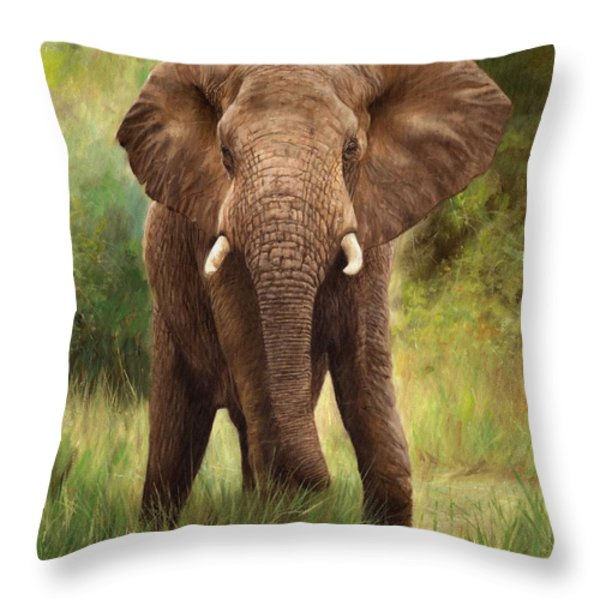 African Elephant Throw Pillow by David Stribbling