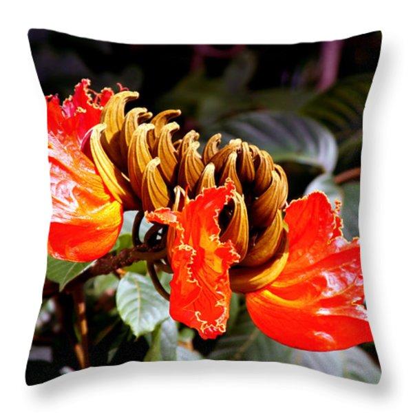 African Tulips Throw Pillow by Karon Melillo DeVega