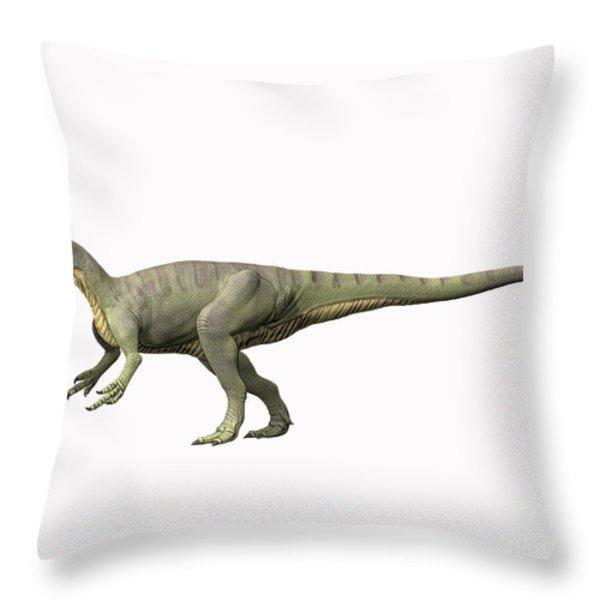 Afrovenator Abakensis, Middle Jurassic Throw Pillow by Nobumichi Tamura
