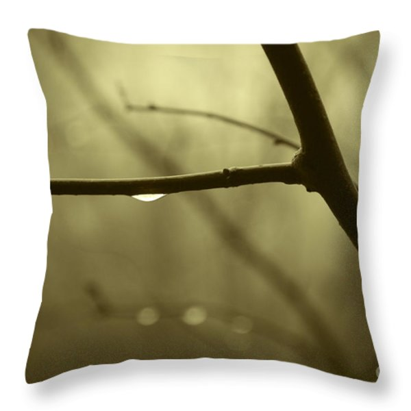 After It Rained Throw Pillow by David Gordon