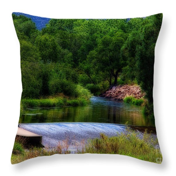 After Rain Throw Pillow by Jon Burch Photography