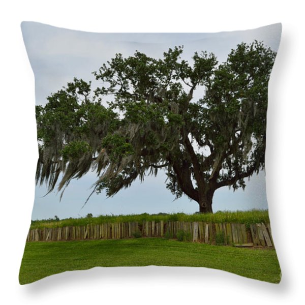 After The Battle Throw Pillow by Alys Caviness-Gober