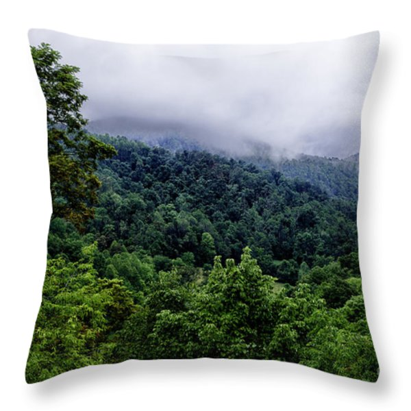After The Storm Throw Pillow by Thomas R Fletcher
