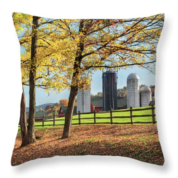 Afternoon Delight Square Throw Pillow by Bill  Wakeley
