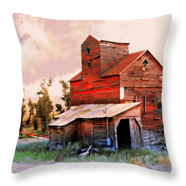 Against The Grain Throw Pillow by Marty Koch
