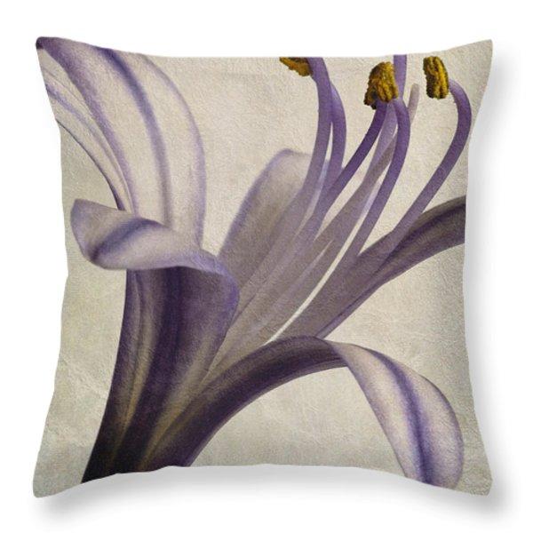 Agapanthus africanus Star Throw Pillow by John Edwards