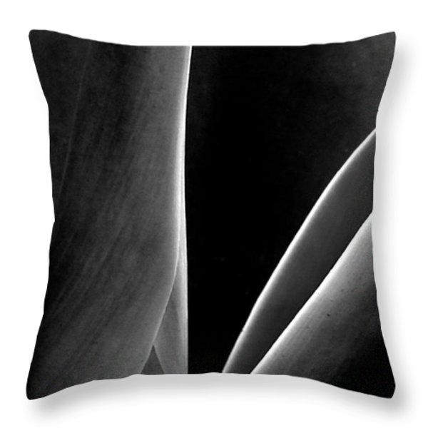 Agave Throw Pillow by Ben and Raisa Gertsberg