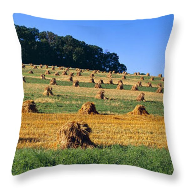 Agriculture - Contour Strips Throw Pillow by Timothy Hearsum