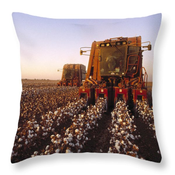 Agriculture - Cotton Harvesting  San Throw Pillow by Ed Young