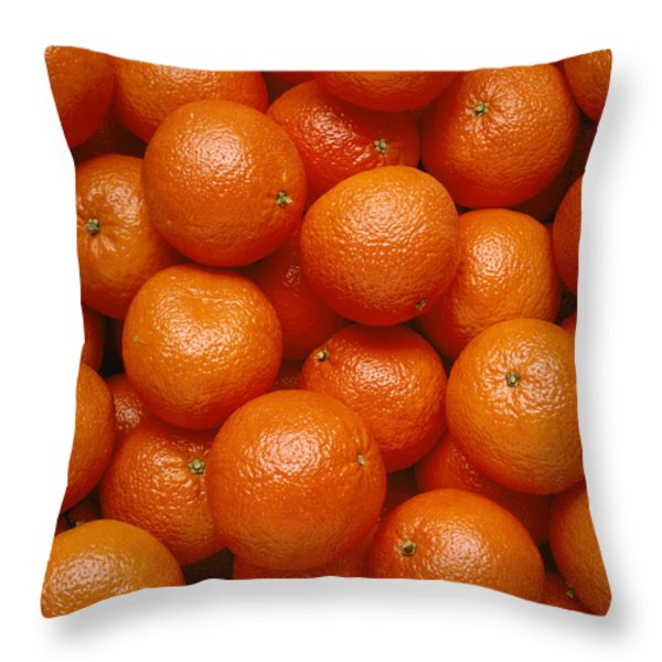 Agriculture - Field Of Tangerines Throw Pillow by Joel Glenn