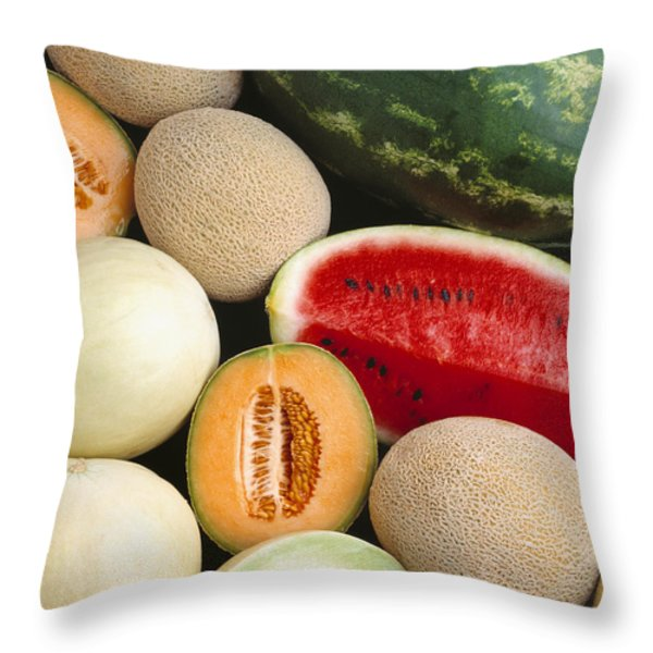Agriculture - Mixed Melons, Watermelon Throw Pillow by Ed Young