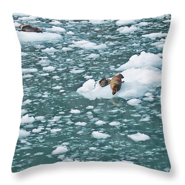 Alaska Seals Throw Pillow by Aimee L Maher Photography and Art Visit ALMGallerydotcom