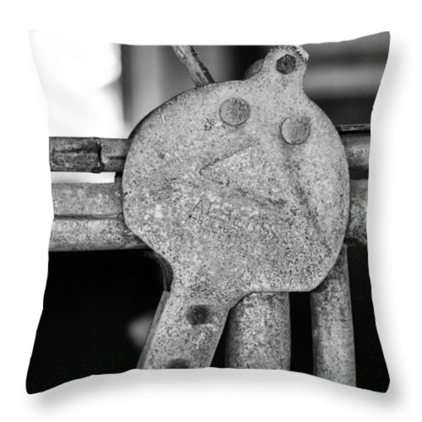 Albers Throw Pillow by Christi Kraft