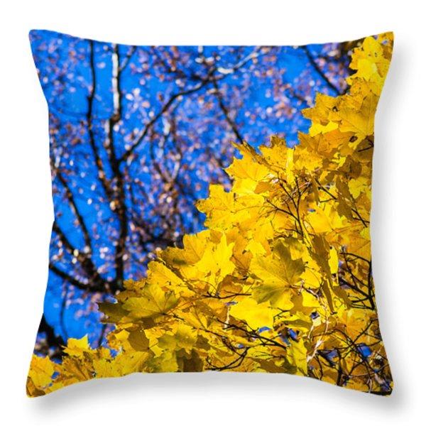 Alchemy Of Nature - Golden Streams Throw Pillow by Alexander Senin