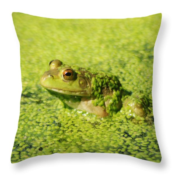 Algae covered frog Throw Pillow by Optical Playground By MP Ray