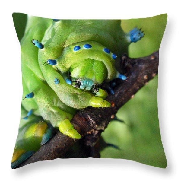 Alien Nature Cecropia Caterpillar Throw Pillow by Christina Rollo