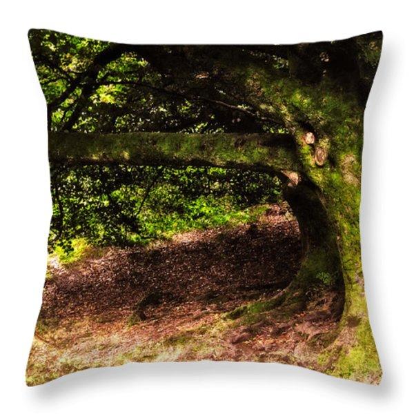 Alive Memory Of Thetrees. Glendalough. Ireland Throw Pillow by Jenny Rainbow