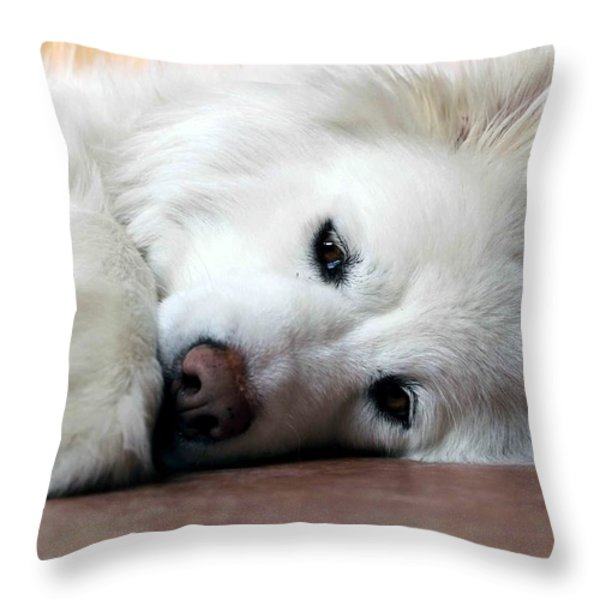 All You Need Is Love Throw Pillow by Fiona Kennard